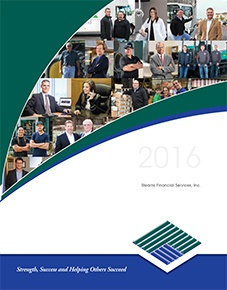 2017 Stearns Financial Report COVER.jpg