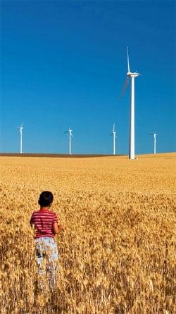 Indian renewable energy