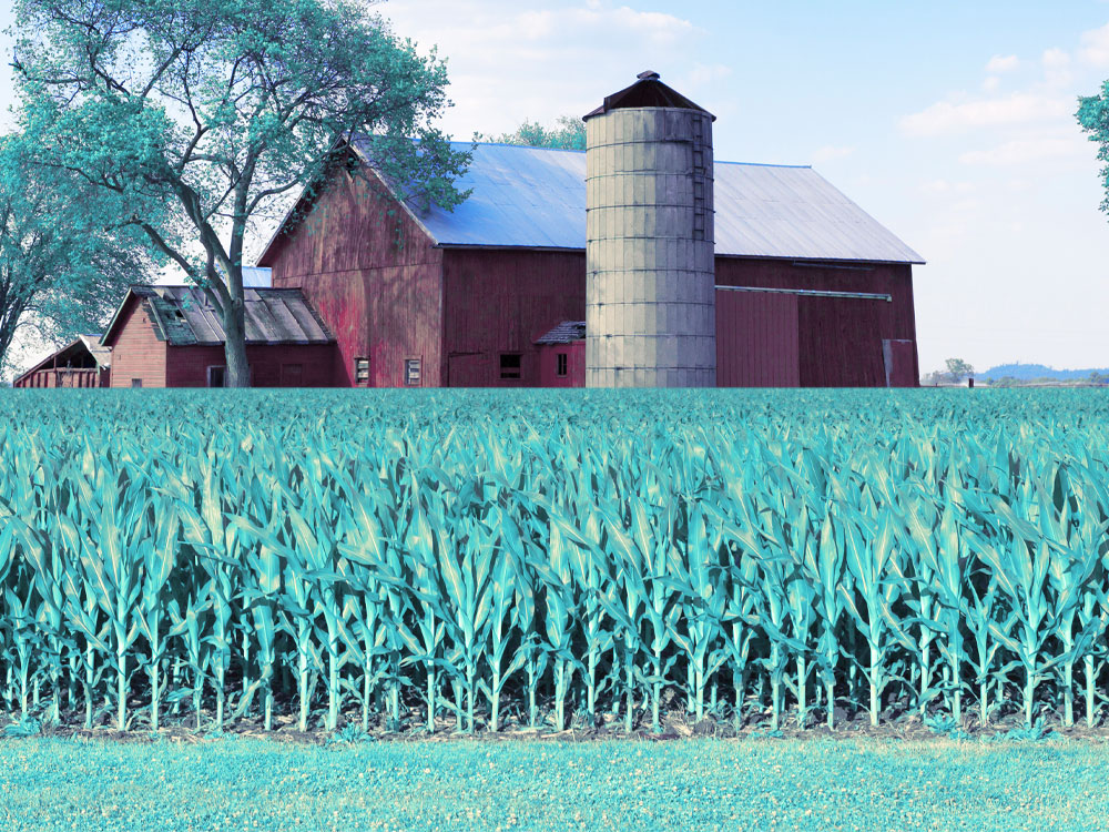 Farm Service Agency loans through Stearns Bank
