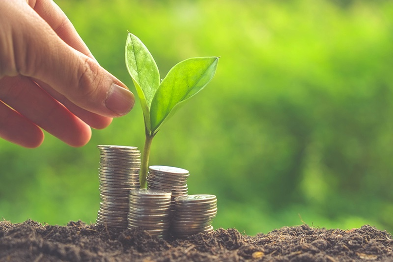 Lending 101: The 5 C's of Credit